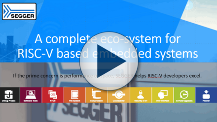 A Complete Ecosystem for RISC-V-Based Embedded Systems
